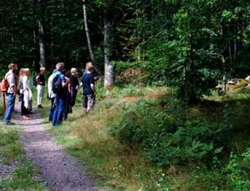 Pilgrimsvandring i Kalv 2012